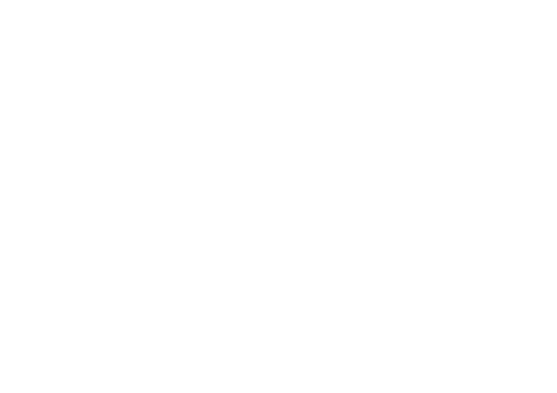 parknow-wit