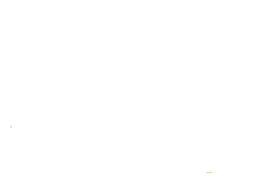 vizeum-wit-2